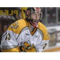 Sarnia Sting Orientation Camp