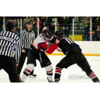 Forward Drew Doyon with the Aberdeen Wings