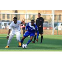 FC Edmonton in Action