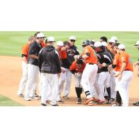 Prentice Redman Congratulated by Long Island Ducks Teammates