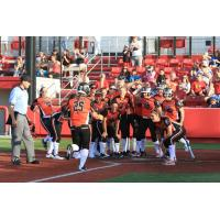 Taylor Edwards Scores after Hitting a Home Run for the Chicago Bandits