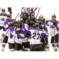 Lone Star Brahmas Celebration