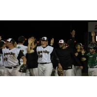 Green Bay Bullfrogs Offer High Fives after Win