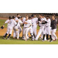 Long Island Ducks Celebrate