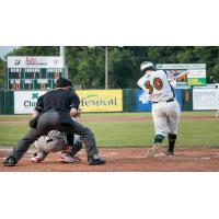 Connor Donovan Bats for the Green Bay Bullfrogs