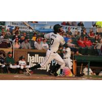 Anthony Gonsolin of the Madison Mallards