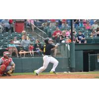 Harrison Kain of the Sioux Falls Canaries