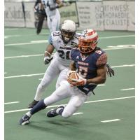 Spokane Shock Wide Receiver Anthony Amos
