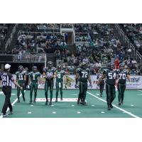 San Jose SaberCats in Action