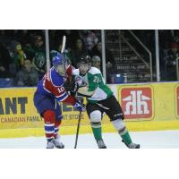 Forward Collin Valcourt with the Prince Albert Raiders