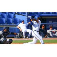 Derrick Loveless of the Dunedin Blue Jays