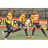 Fort Lauderdale Strikers Forward Stefano Pinho Celebrates a Goal with Teammates