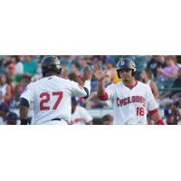 Brooklyn Cyclones Exchange High Fives