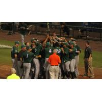 Daytona Tortugas Celebrate Playoff Victory