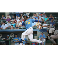 Chicago Cubs Outfielder Jorge Soler with the Myrtle Beach Pelicans