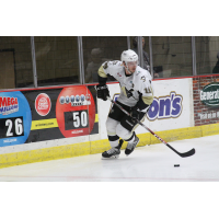 Wheeling Nailers Forward Shane Bakker