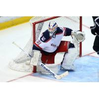 Jason Missiaen with the Hartford Wolf Pack