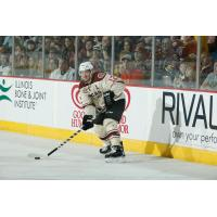 Chicago Wolves Forward Pat Cannone