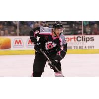 Cincinnati Cyclones in Action