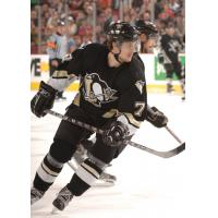 Forward Matt Hussey with the Pittsburgh Penguins