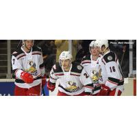 Grand Rapids Griffins in Action