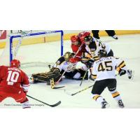 Allen Americans and Colorado Eagles Pileup in Front of Eagles Goal