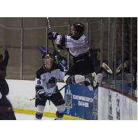 Lone Star Brahmas Leap in Celebration of Goal