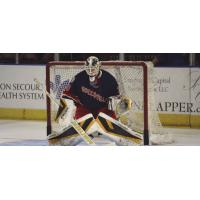 Greenville's Swamp Rabbits Goaltender Adam Morrison