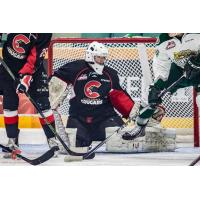 Prince George Cougars Goaltender Mack Shields