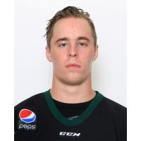 Quad City Mallards Forward Logan Nelson