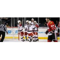 Grand Rapids Griffins Celebrate a Goal vs. the Rockford IceHogs