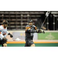 Drew Petkoff with the New England Black Wolves