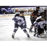 Lone Star Brahmas Battle for the Puck