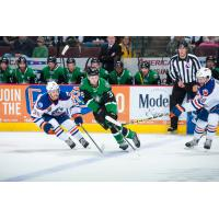 Texas Stars Control the Puck against the Bakersfield Condors