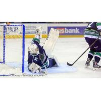 Florida Everblades Goaltender Anthony Peters