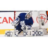 Former Orlando Solar Bears Goalie Garret Sparks with the Toronto Maple Leafs