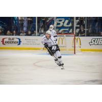 Forward Tommy Apap with the Fargo Force