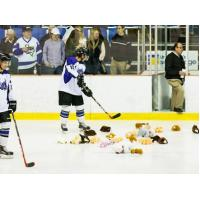 Lone Star Brahmas Teddy Bear Toss