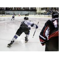 Lone Star Brahmas Skate against the Wichita Falls Wildcats