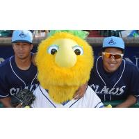 Lakewood BlueClaws Players and Mascot