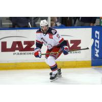 Hartford Wolf Pack Forward Matt Lindblad