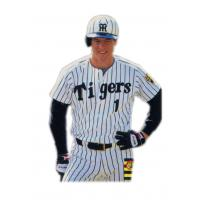 Tom O'Malley with the Hanshin Tigers