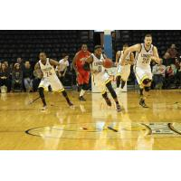 London Lightning vs. Windsor Express