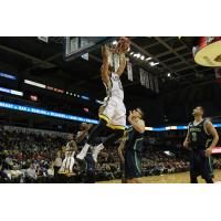 London Lightning Dunk on the Niagara River Lions