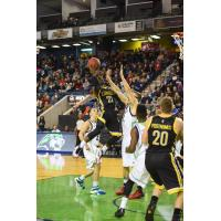 London Lightning Go up for a Shot vs. the Niagara River Lions