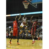 London Lightning Go up for a Shot vs. the Windsor Express