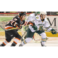Omaha Lancers vs. Sioux City Musketeers