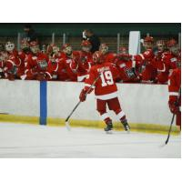 Port Huron Prowlers Celebrate a Goal