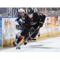Lake Erie Monsters vs. the Milwaukee Admirals