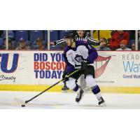 Reading Royals Forward Brandon Alderson Handles the Puck